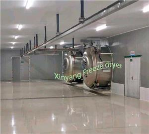A new project of fruit freeze drying plant with 2xLG200 freeze dryer in Shandong