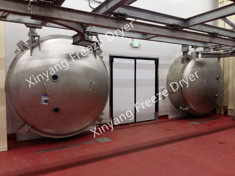 Freeze drying plant