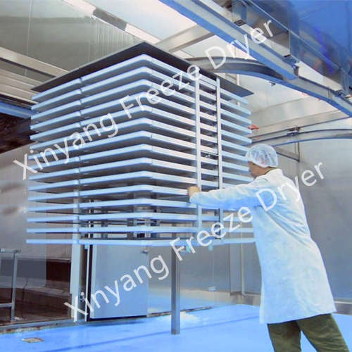 Large Freeze Dryer with 1200kg Capacity Manufacturers, Large Freeze Dryer with 1200kg Capacity Factory, Supply Large Freeze Dryer with 1200kg Capacity