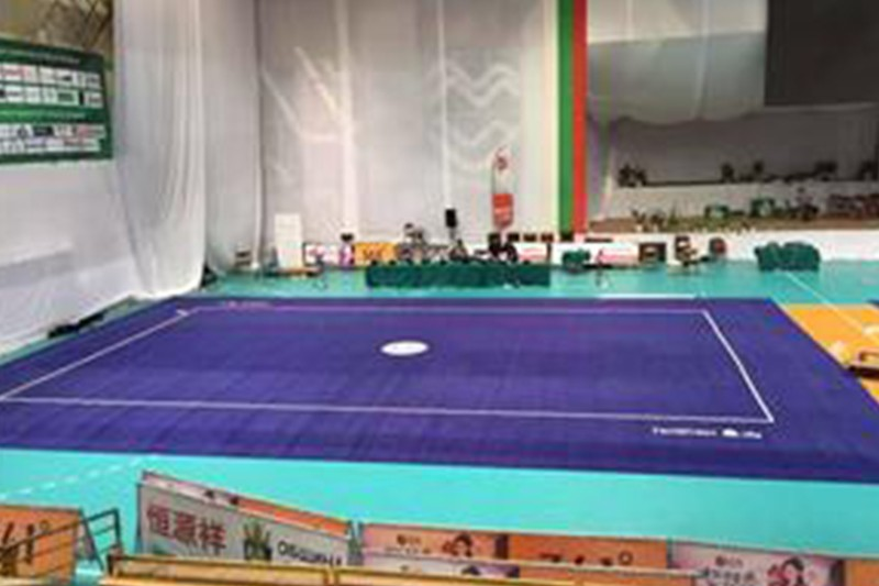 Wushu Field Manufacturers, Wushu Field Factory, Supply Wushu Field
