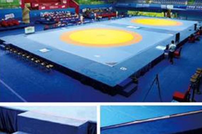 Wrestling High Platform Manufacturers, Wrestling High Platform Factory, Supply Wrestling High Platform