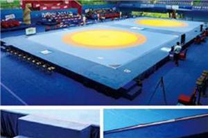 Wrestling High Platform