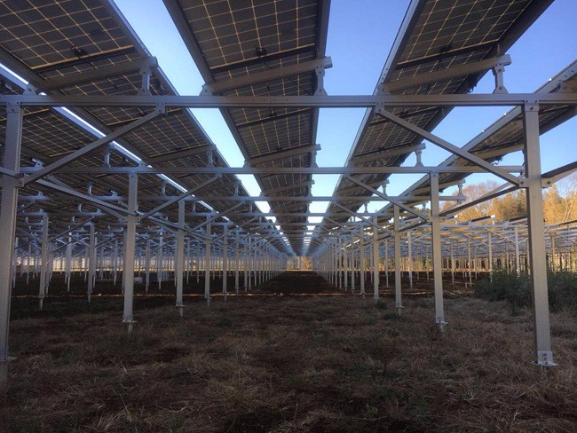 Solar Farm Mount Racking System