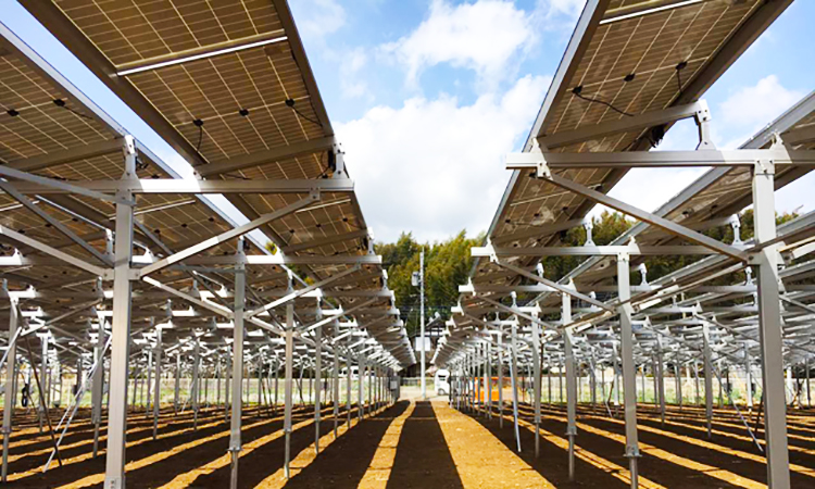 Solar Farm Structure System