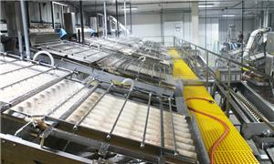 SPP-I Shrimp Peeling Production Line