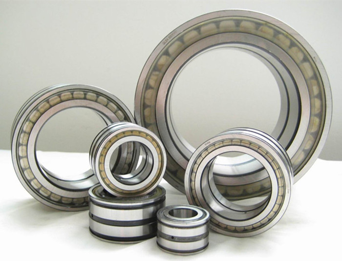 SL Double Row Full Complement Cylindrical Roller Bearings.jpg
