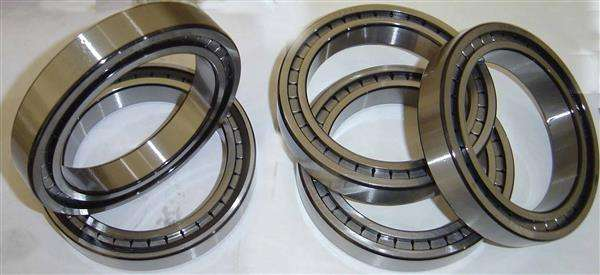 SL Single Row Full Complement Cylindrical Roller Bearings.jpg