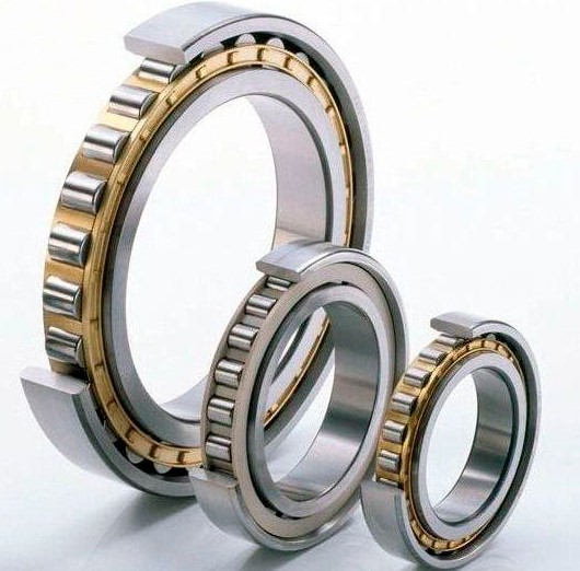 Cylindrical Roller Bearings Single Row Super-precision.JPG