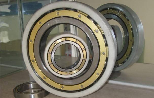 INSOCOAT Bearings   4.JPG