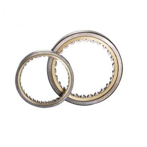 High quality SL Single Row Full Complement Cylindrical Roller Bearings Quotes,China SL Single Row Full Complement Cylindrical Roller Bearings Factory,SL Single Row Full Complement Cylindrical Roller Bearings Purchasing