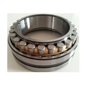 Cylindrical Roller Bearings Double Row Super-precision