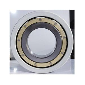 High quality INSOCOAT Bearings Quotes,China INSOCOAT Bearings Factory,INSOCOAT Bearings Purchasing
