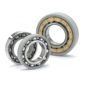 INSOCOAT Cylindrical Roller Bearings