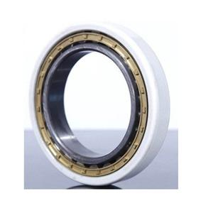 High quality INSOCOAT Cylindrical Roller Bearings Quotes,China INSOCOAT Cylindrical Roller Bearings Factory,INSOCOAT Cylindrical Roller Bearings Purchasing