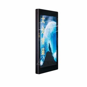 P4.545 Outdoor Pole LED Display