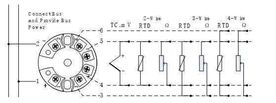 Fieldbus Temperature Module