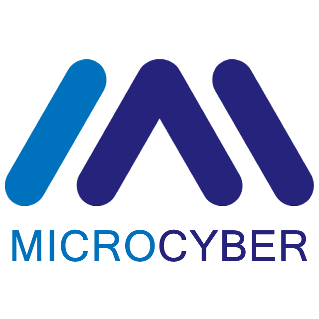 Talent Strategy of Microcyber