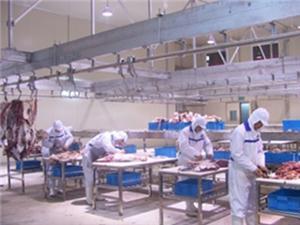 Double Layer Debonning Conveyor Manufacturers, Double Layer Debonning Conveyor Factory, Supply Double Layer Debonning Conveyor