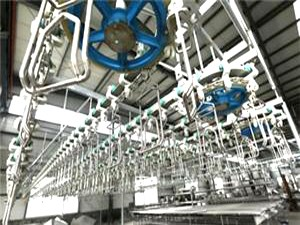 SUS Conveyor Chain