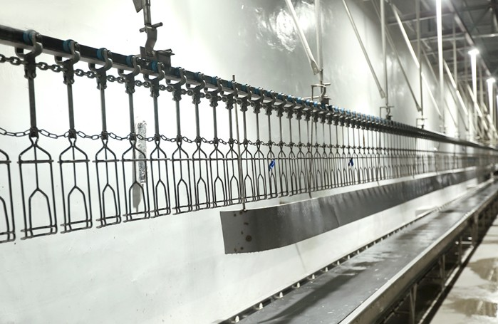 How To Choose A Suitable Slaughter Production Line