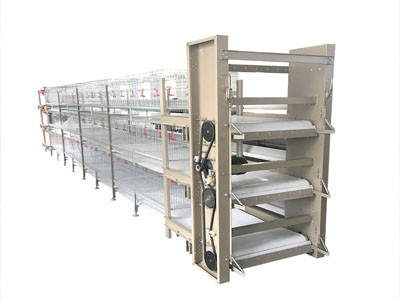 Poultry Farming Chicken Cage