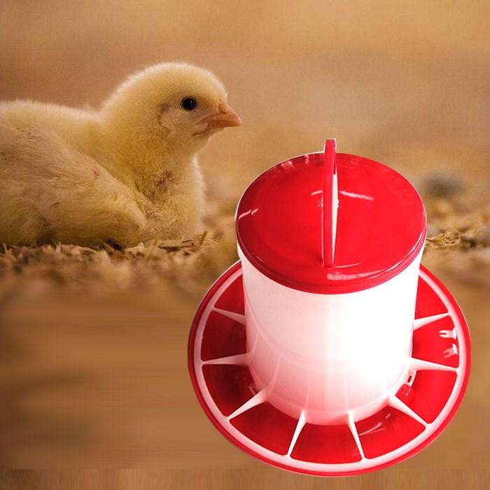 Chicken Feeding Pan- Bucket Type