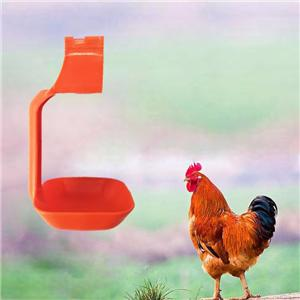 Poultry watering system Chicken Farm Equipment Manufacturers, Poultry watering system Chicken Farm Equipment Factory, Supply Poultry watering system Chicken Farm Equipment