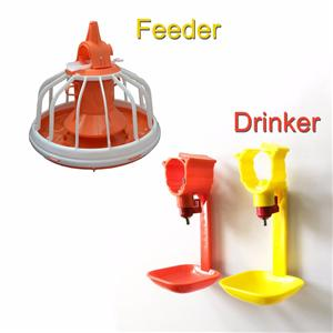 Chicken feeder and drinker Manufacturers, Chicken feeder and drinker Factory, Supply Chicken feeder and drinker