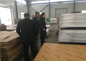 Foreign customers visit the factory