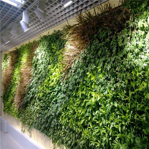 High quality Artificial plant wall Quotes,China Artificial plant wall Factory,Artificial plant wall Purchasing