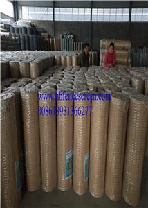 loading galvanzied welded wire mesh, pvc coated welded wire mesh, square wire mesh