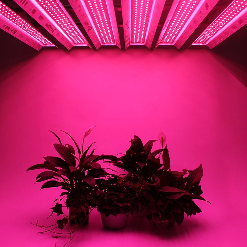 Buy Purchase indoor plant grow light,full spectrum led grow light bar Promotions