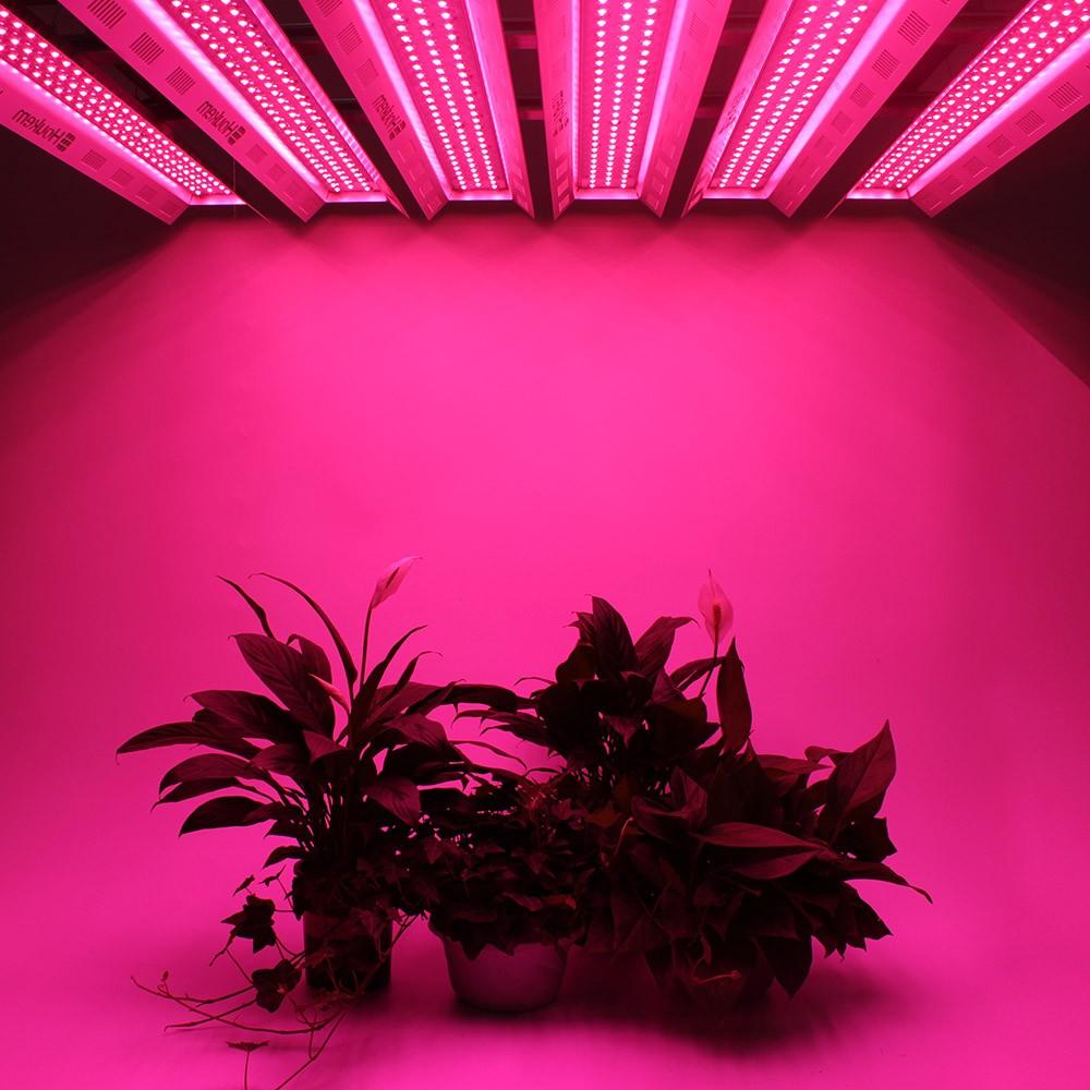 Compre Compre planta de interior crezca ligero, espectro completo led barra de luz de crecimiento Promociones