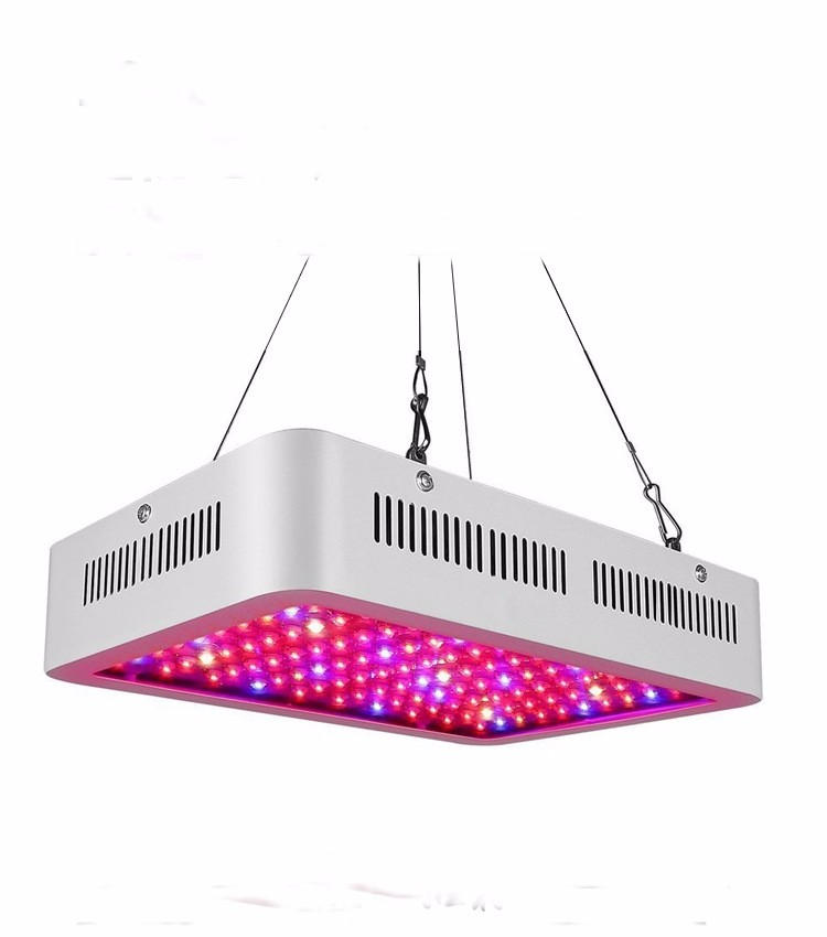 Wholesale price High Power 300w led grow light Manufacturers