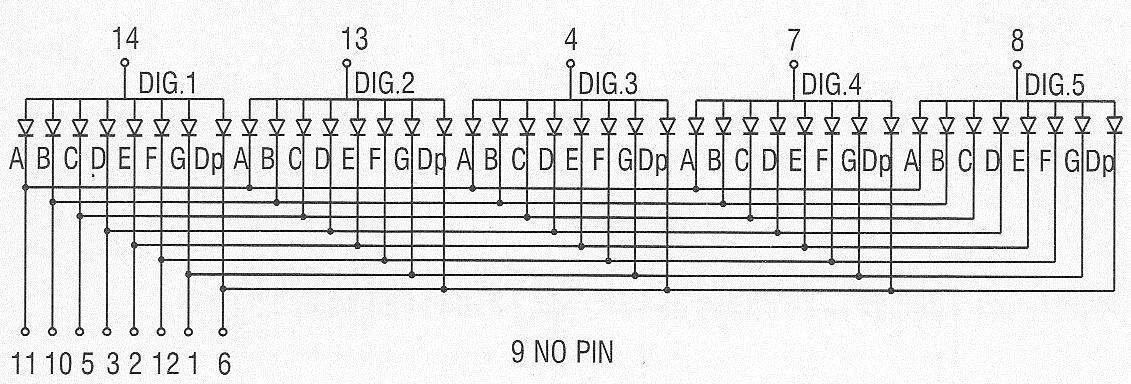 5 digit 7 segment led display