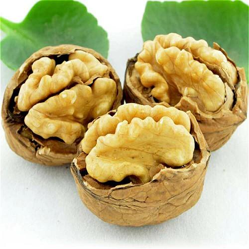 Walnut In Thin Shell Manufacturers, Walnut In Thin Shell Factory, Supply Walnut In Thin Shell