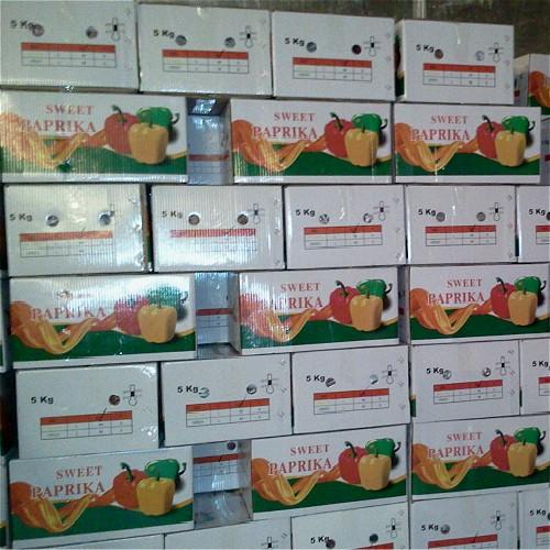 Paprika Manufacturers, Paprika Factory, Supply Paprika