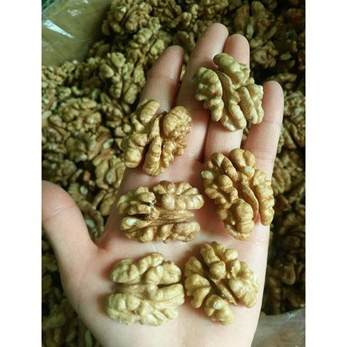 butterfly walnut kernels price