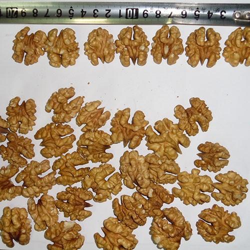 white walnut kernels extra light yellow walnut kernels