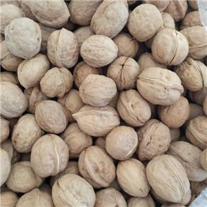the best walnuts prices China grown walnut with thin shell
