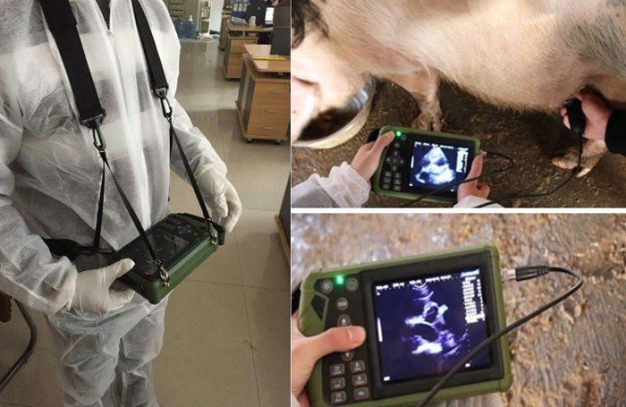 Animal Use Ultrasound Equipment Manufacturers, Animal Use Ultrasound Equipment Factory, Supply Animal Use Ultrasound Equipment