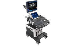 3d Ultrasound Scan
