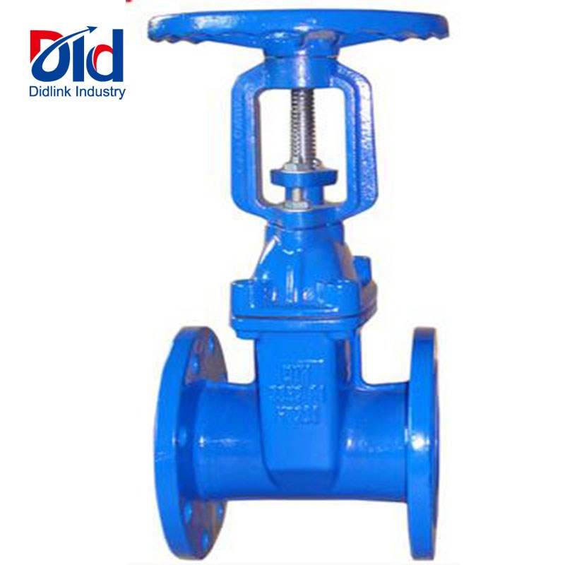 Gate Valve Rising stem