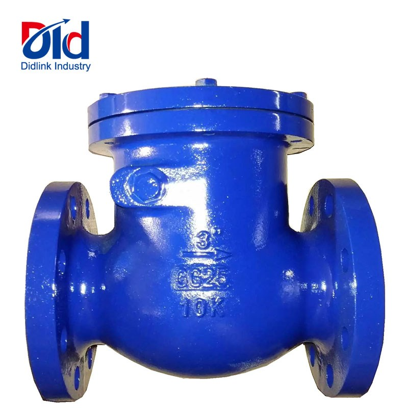 Cast Iron Jis Check Valve