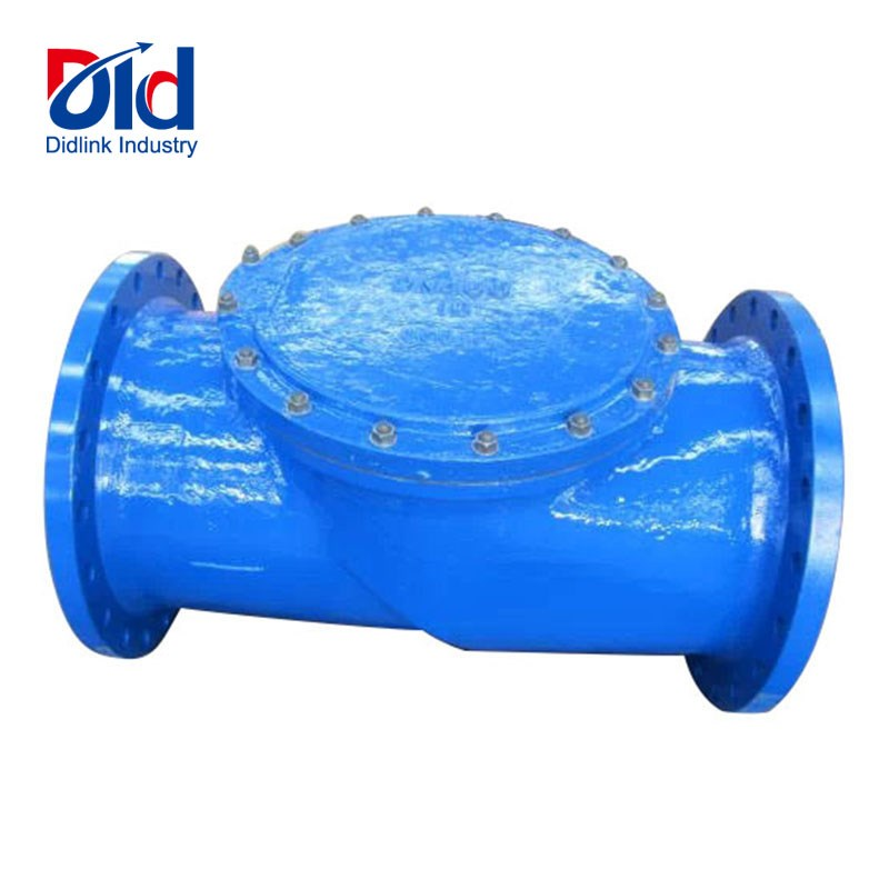 Spring Loaded Lift Check Valve