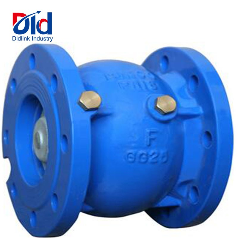 Cast iron slient check valve
