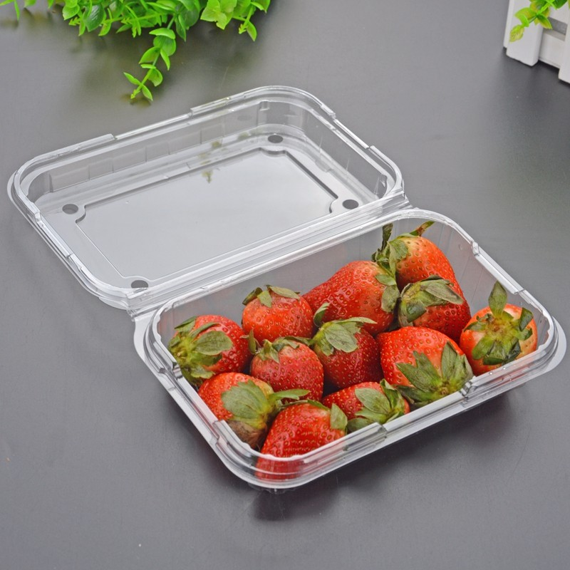 High quality disposable plastic tray supermarket fruit and vegetable packaging transparent lunch box fresh tray Quotes,China disposable plastic tray supermarket fruit and vegetable packaging transparent lunch box fresh tray Factory,disposable plastic tray supermarket fruit and vegetable packaging transparent lunch box fresh tray Purchasing