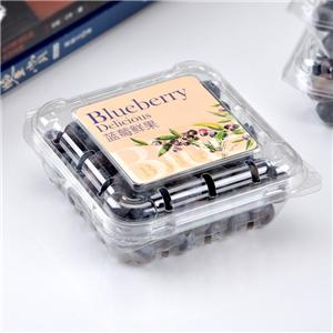 Blueberry box Food grade disposable clear plastic fruit packing box with cover
