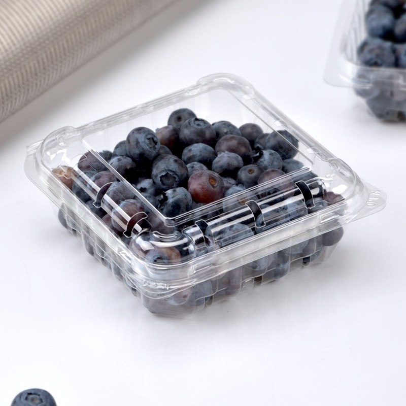 High quality Blueberry box Food grade disposable clear plastic fruit packing box with cover Quotes,China Blueberry box Food grade disposable clear plastic fruit packing box with cover Factory,Blueberry box Food grade disposable clear plastic fruit packing box with cover Purchasing