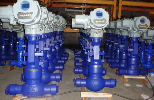 Pressure Seal Bonnet  Ceramic Globe Valves